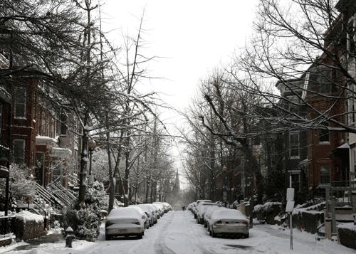 snowday22009